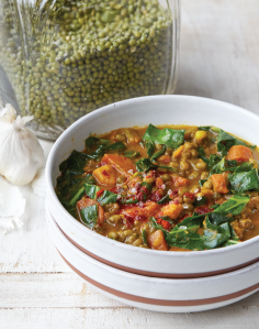 VPC Curried Mung Bean Stew recipe photo